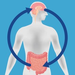 Brain Gut Health